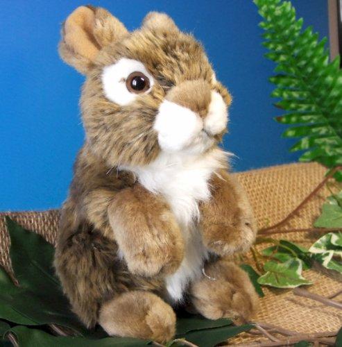 Hase Kaninchen braun 9