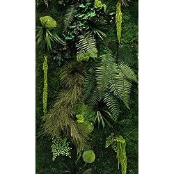 Mur végétal intérieur stabilisé kit