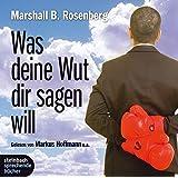 Was deine Wut dir sagen will: überraschende Einsichten. 2 CDs