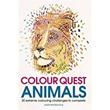 Colour Quest Animals
