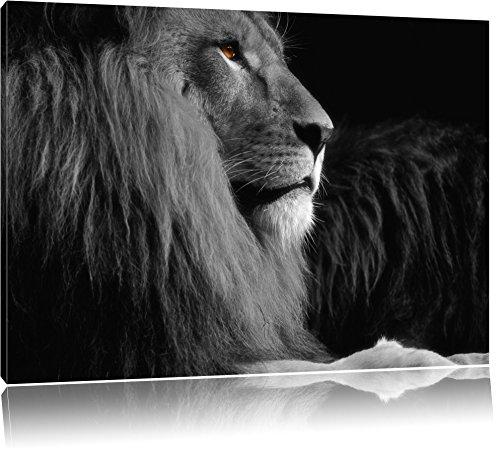 Dark wunderschöner stolzer Löwe schwarz/weiß Format: 120x80auf Leinwand, XXL riesige Bilder fertig gerahmt mit Keilrahmen, Kunstdruck auf Wandbild mit Rahmen, günstiger als Gemälde oder Ölbild, kein Poster oder Plakat -