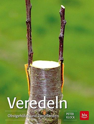 veredeln-obstgeholze-und-zierpflanzen