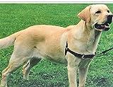 JWPC Hundegeschirr Easy auf/aus, Pet Hundegeschirr Weste Walking Running Quick Fit Reflektierend für Small Medium Große Hunde