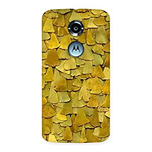 Delighted Wings Pattern Back Case Cover for Moto X 2nd Gen