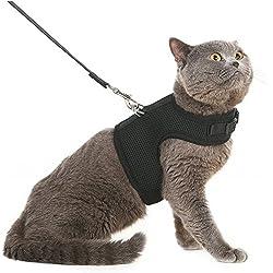 Arnés y correa para gato de BINGPET, a prueba de huidas, arnés de malla tipo chaleco, ajustable y suave, para pasear al gato