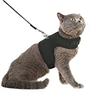 BINGPET Escape Proof Cat Harness and Leash - Adjustable Soft Mesh Holster Style - Best for Kitten Walking