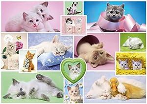 Schmidt Spiele Schmusekatzen Puzzle - Rompecabezas (Puzzle Rompecabezas, Animales, Niños y Adultos, Schmusekatzen, Gato, Niño/niña)