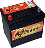 Banner Batterie P6069 60Ah 390AEN Power Bull