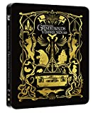 Phantastische Tierwesen: Grindelwalds Verbrechen 3D + 2D Steelbook (exklusiv bei amazon.de) [3D Blu-ray] - 3