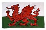 Waliser Wales Flagge Drachen weiß grün rot Baumwolle Küchen Geschirrtuch