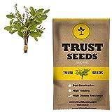 #2: TrustBasket Tulsi Vegetable Seeds (GMO Free)