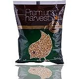 Premium Harvest Pulses - Chana Dal, 1kg Pouch