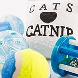 EMA Katzenspielzeug, 8-teiliges Set - 5