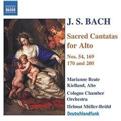 Widerstehe doch der Sunde, BWV 54: Recitativo: Die Art verruchter Sunden (Alto)