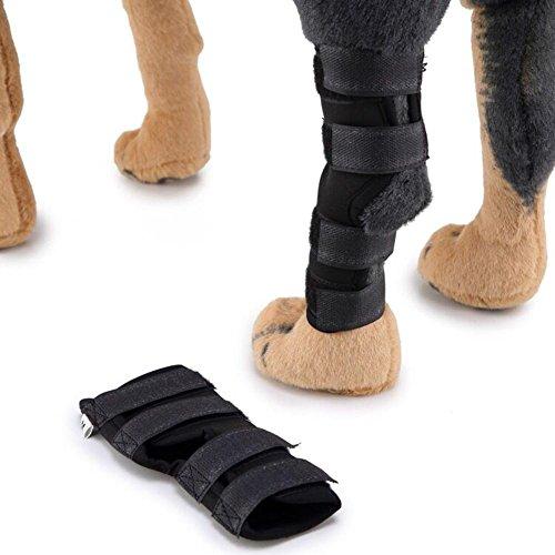 Everpert 1 par de soportes para perros para rodilla de perro, protector...
