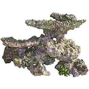 Haquoss Rock Viva Kunstharz 8, 53x 38x 36H cm