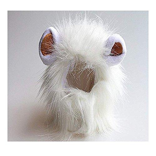Für Lustige Menschen Den Katze Kostüm - Morbuy Reizende Katzenkostüm Hunde Haustier Löwenkostüm Kleidung, Haustier Kostüme Kleidung Katze lustiges Hunde Katze Halloween Karneval Cosplay (Weiß)
