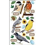 Sticko Stickers-Top U.S. Birds 1