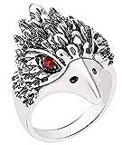 EVRYLON Bague Aigle Muselière Oiseau Indien Hawk Oiseau Ethnique Homme Garçon Femme...
