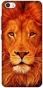 The Racoon Lean Face of the Lion hard plastic printed back case / cover for Xiaomi Mi 5