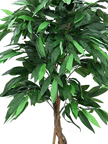 artplants – Deko Mangobaum mit 810 Blättern, Naturstamm, Lianen, 150 cm – Künstlicher Obstbaum/Kunstbaum