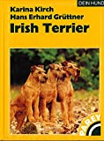 Irish Terrier DEIN HUND Buch
