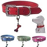 Lushpetz Hundehalsband mit Knochen-Charme Erhältlich in Rosa, Blau, Rot, Grün, Weiß oder Lila für XS, Kleine, mittlere und große Rassen (XS, Rot)