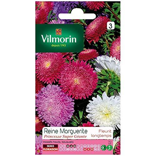 Vilmorin - Sachet graines Reine Marguerite Princesse super géante