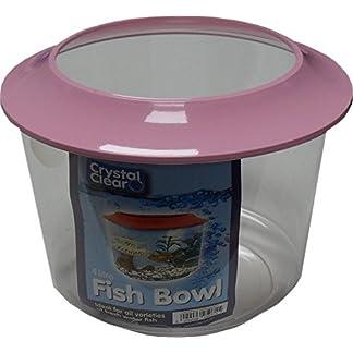 Goldfish Bowl 9