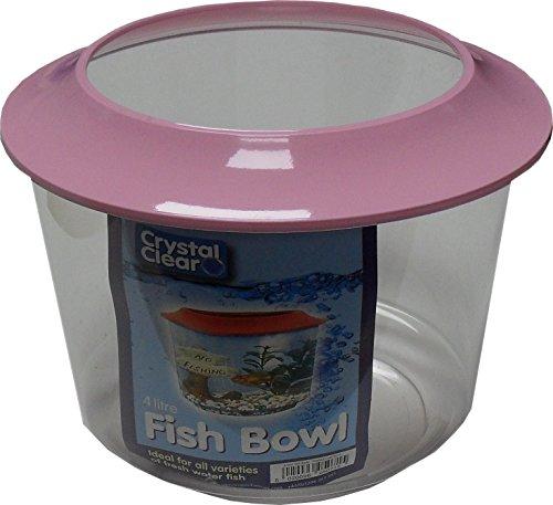 Goldfish Bowl 1