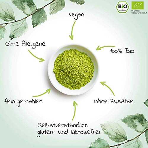 Bio Matcha-Tee Pulver 100g – Echter Bio-Matcha (DE-ÖKO-001) – Ohne Zusätze, rein natürlich, 100% Bio & im wiederverschließbaren Beutel – Perfekt für Tee, Matcha-Latte, Matcha-Smoothies und mehr.