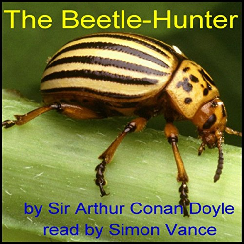 The Beetle-Hunter  Audiolibri