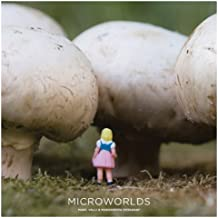 Microworlds by Margherita Dessanay (2011-08-10)