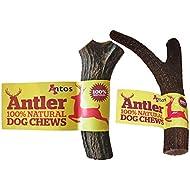 Antos Antler 100% Natural Dog Chews Medium Pack of 2