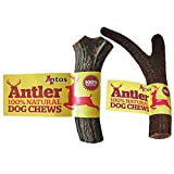 'Antos Antler 100% Natural Dog Chews Small Pack Of 2