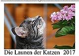 Die Launen der Katzen 2017 (Wandkalender 2017 DIN A2 quer): Die schönsten Momente aus dem Leben der Hauskatzen. (Monatskalender, 14 Seiten ) (CALVENDO Tiere)