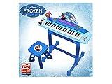 Reig 5395 elektrisches Piano mit Mirkofon