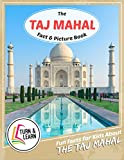 The Taj Mahal Fact and Picture Book: Fun Facts for Kids About Taj Mahal