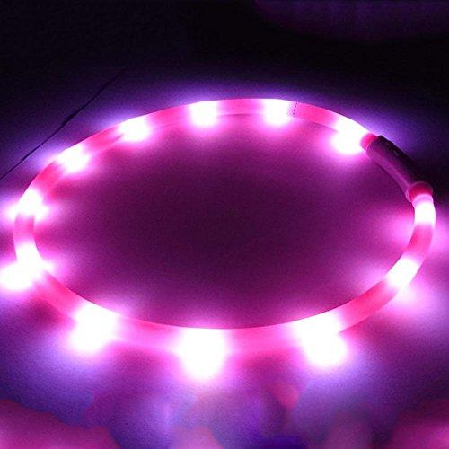 Collare cane collare gatto,impermeabili luminosi LED ricaricabili luminosi LED per cani,Prodotti Gli animali