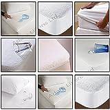 Adam Linens–Protector de colchón para niños de, Individual y de matrimonio, impermeable, rizo, 100% poliéster, Small Single
