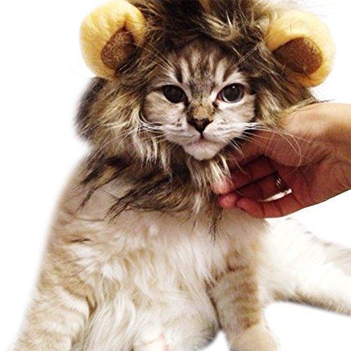 Katzen & Hunde Kostüm Haustier Löwe Mähne Perücke Halloween Weihnachtskleid Mit Niedlichen Ohren