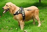 Masayume home Hundegeschirr Einstellbar Weich Brustgeschirr Einfach für Klein Mittelgroße Große Hunde Haustier Training oder Gehen - Ideal No-Pull-Hunde Geschirr (Medium)