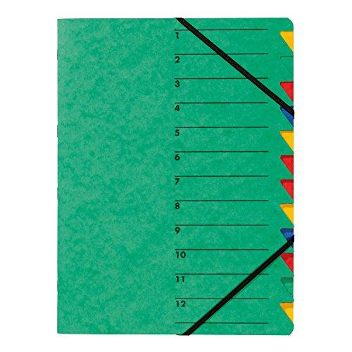 Pagna 24131-03 Ordnungsmappe Easy, Pressspan, A4, 12 Fächer, buntes Register, Einband grün