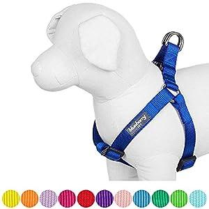 Blueberry Pet Harnais, Classique, Solide, Bleu Roi, Réglable, Harnais pour chien, Collier et laisse assortis vendus séparément.