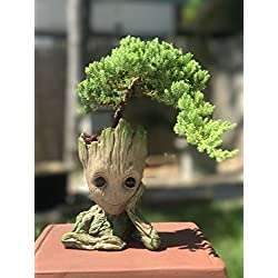 Bonsai-Schale Baby Groot