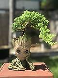 Tuina Bonsai-Schale Baby Groot, Stifte- und Make-up-Pinsel-Halter (Denkender-Groot)