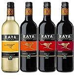 Südafrika Quartett Fairtrade Wein Probierpaket Trocken (4 x 0.75l)