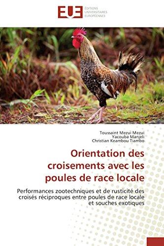 Orientation des croisements avec les poules de race locale