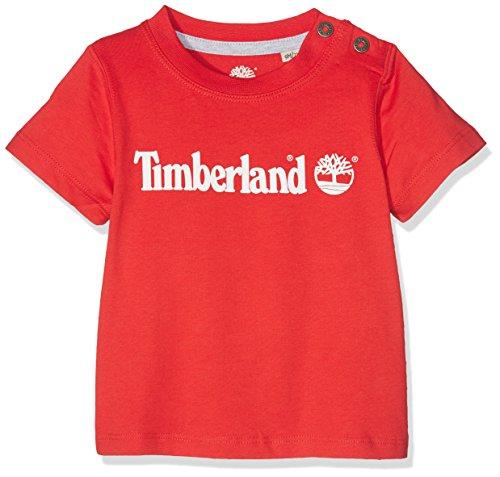 Timberland Baby-Jungen Short Sleeves T-Shirt T05g23, Rot, 9-12 Monate (Herstellergröße: 12 Monate) (Tee Sleeve Baby-jungen-short)