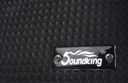Soundking AK20-RA Gitarrencombo 2-Kanal, 60 Watt - 4